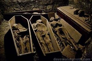 MummiesDublin