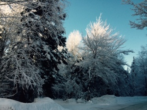 SnowOnOurRoad