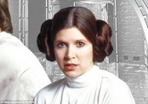 Princess Leia Bun