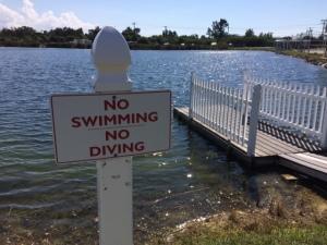 NoSwimSign