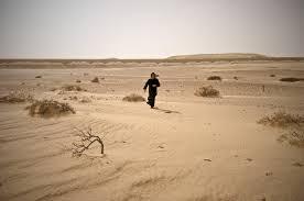desertwanderer
