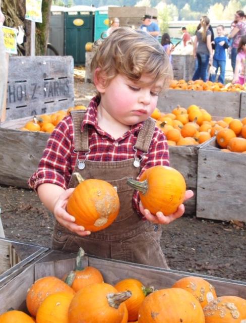 Elisa Pumpkins